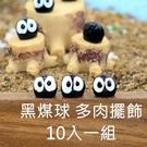 [拉拉百貨]多肉 盆栽 黑煤球10入一組 龍貓 造景 植栽 微景觀