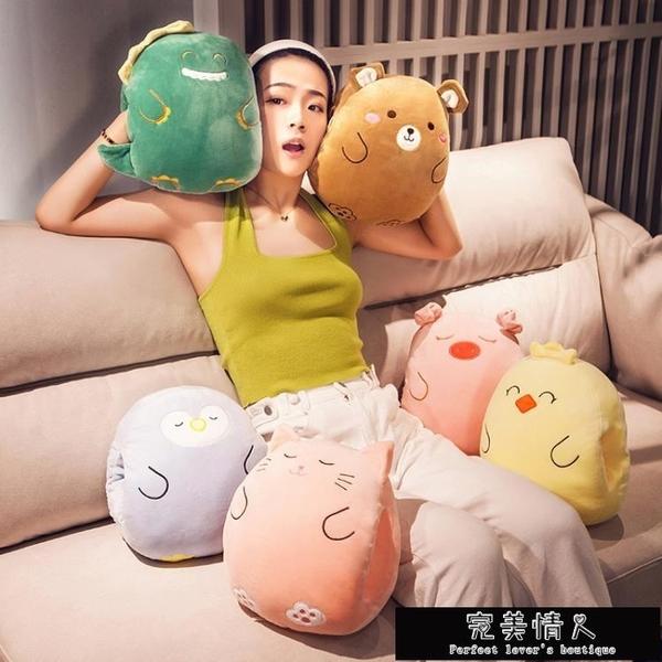 暖手枕頭暖寶寶可愛女生睡覺冬季天卡通插手毛絨玩具【全館免運】
