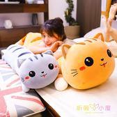 可愛貓咪毛絨玩具欠揍貓陪你睡覺夾腿抱枕長條枕娃娃公仔床上玩偶