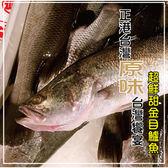 海撰金目鱸魚