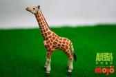 【Mojo Fun 動物星球】非洲動物-小長頸鹿 387007