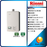 Rinnai林內 RUA-1623WF-DX 強制排氣型16L熱水器