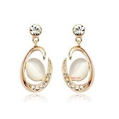 耳環 925純銀鑲鑽-歐風設計生日情人節禮物女耳針2色73gt208[時尚巴黎]