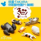 【扭蛋-TAKARA-休眠動物園P1(躺睡)】Norns 柯基 驢子 貓 公仔 盒玩 轉蛋 隨機出貨