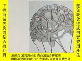 二手書博民逛書店Wang罕見Luyan: Visual Thinking and