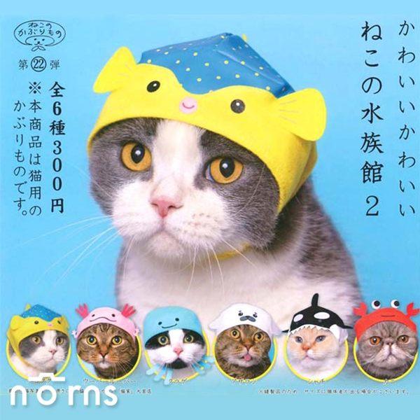【KITAN扭蛋 貓咪專屬頭巾P18水族館篇P2】Norns 貓頭套 寵物變裝 海洋生物 河豚小蠑螈章魚