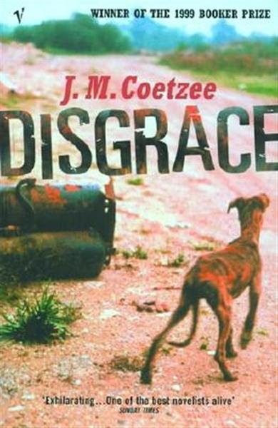 (二手書)Disgrace