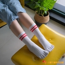 5雙裝 純棉五指襪中筒全棉分趾襪運動分指襪【小獅子】