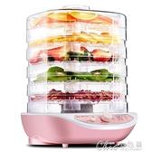 乾燥機 金正干果機家用食品烘干機水果蔬菜寵物肉類食物脫水風干機 【全館免運】