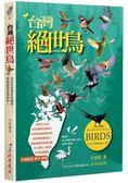 台灣絕世鳥 來自天堂美好的禮物,透過鏡頭呈現給您!