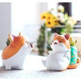 ⓒ人氣盆栽🔥短腿柴犬 / 哈士奇花盆 多肉盆栽【C10001】