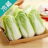 越南鮮採娃娃菜200G/包【愛買冷藏】