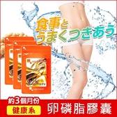 大豆卵磷脂膠囊 (含藤黃果) 營養補給 調整體質 健康維持【約3個月份】ogaland