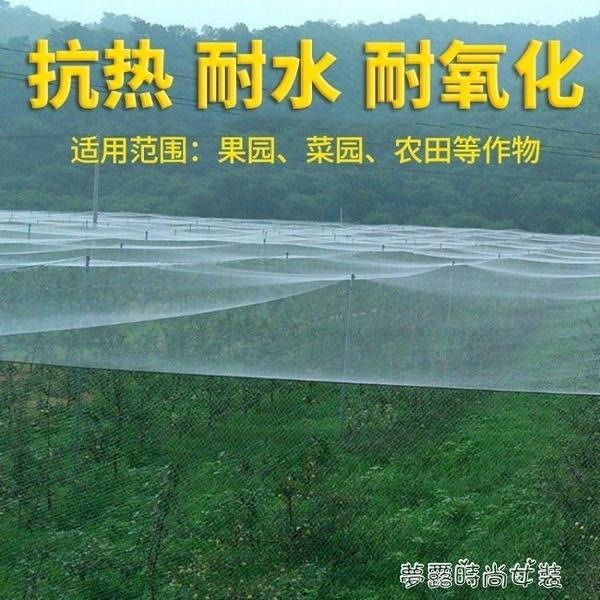 尼龍防鳥網天網果園果樹網稻谷櫻桃葡萄魚塘防護 【全館免運】