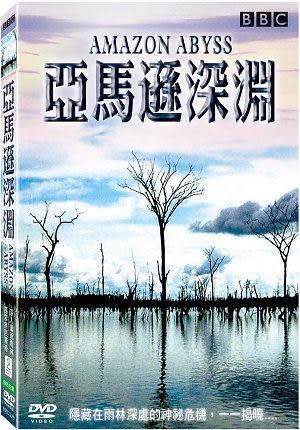亞馬遜深淵 DVD Amazon Abyss BBC 瀑布 帶電魚 鯰魚 魟魚 江豚 鱷魚 巨蛇 (音樂影片購)