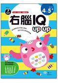 右腦IQ up up(4 5歲)