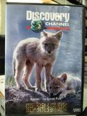 挖寶二手片-Z63-007-正版VCD-其他【掠食者系列:野狼撲擊】-Discovery自然類(直購價)