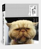 (二手書)「拍貓,是很嚴肅的。」吳毅平15年貓寫真精選
