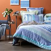 HOLA 瑞格天絲床包兩用被組 雙人