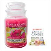 YANKEE CANDLE 香氛蠟燭-火龍果(買623g送104g)