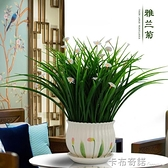 假花塑料花 套裝仿真綠植室內茶幾 餐桌 電視櫃擺設裝飾花卡 布奇諾