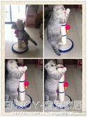 貓爪板 貓薄荷和固定雙面膠劍麻貓磨爪子玩具貓抓柱貓抓板 宜室家居