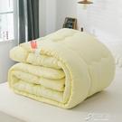 棉被 棉被春秋加厚保暖冬被學生單雙人化纖被廠商直銷 YYJ【快速出貨】