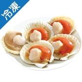 日本特大扇貝(5~6粒)(300G±5%/包)【愛買冷凍】