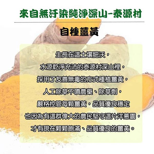 鑫愛家 100%純釀天然薑黃酵液2入組(500ml/瓶)