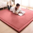 客廳地毯-地毯臥室客廳毯防滑飄窗墊床邊防摔地毯 艾莎YYJ