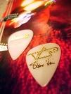 ☆ 唐尼樂器︵☆ Ibanez Steve Vai 御用簽名款電吉他用 PICK /彈片(表面防滑顆粒設計)