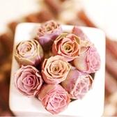ⓒ粉色山地玫瑰多肉植物種子(10顆裝)【G32】