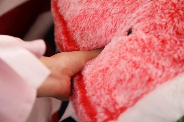 【40公分】創意西瓜櫻桃玩偶 毛絨娃娃 仿真抱枕 聖誕節交換禮物 生日禮物 情人節 辦公室小物