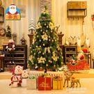 鬆針聖誕樹套餐1.5/2.1/2.4米豪...