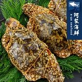 【阿家海鮮】鮮甜生凍佐渡母花蟹(2隻裝) (220±10%/隻)