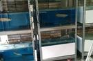 (收納空間)消光黑免螺絲角鋼台北桃園高雄LY品牌免螺絲角鋼物料架貨架倉儲架置物架水族架書架