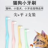 2只裝 寵物牙刷貓咪刷牙套裝小狗清潔牙齒除口臭尖頭軟毛貓咪牙刷【小獅子】