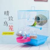 外掛鳥籠子鸚鵡