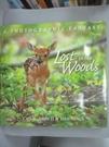 【書寶二手書T3/少年童書_E4N】Lost In The Woods: A Photographic Fantasy_