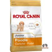 【寵物王國】法國皇家-PRPJ33貴賓幼犬專用飼料3kg