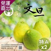 【預購】水果爸爸-FruitPaPa 葫蘆墩48年老欉特A級柚子文旦禮盒 10斤/箱x2箱【免運直出】