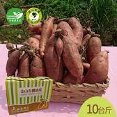 金山66號有機地瓜番薯(紅肉)10台斤/盒