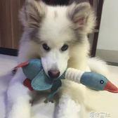 狗狗玩具泰迪小型犬金毛大狗幼犬大型犬小狗磨牙耐咬發聲寵物用品 港仔會社