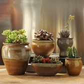多肉花盆 粗陶透氣復古大口徑家用肉肉室內陶瓷小盆創意特價