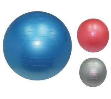 防爆型抗力訓練球(55CM)