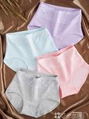 棉質內褲 高腰內褲女純棉收腹女士產後全棉蕾絲褲頭大碼胖mm透氣提臀三角褲