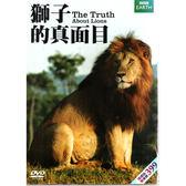 獅子的真面目DVD The Truth About Lions 強納森史考特大貓日誌野獸之