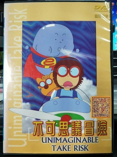 挖寶二手片-P03-482-正版DVD-動畫【不可思議冒險】-國語發音(直購價)