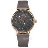 TIMEX 天美時 / TXTW2T87700 / 復刻系列 Swarovski 星座顯示 礦石強化玻璃 真皮手錶 深灰x玫瑰金框x鈦 37mm