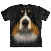 【摩達客】 (現貨) 美國進口【The Mountain】自然純棉系列 伯恩山犬臉 T恤(10413045001a)